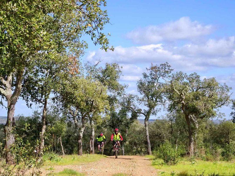 Cork Trees and Coast Self-Guided - Portugal Bike Tours