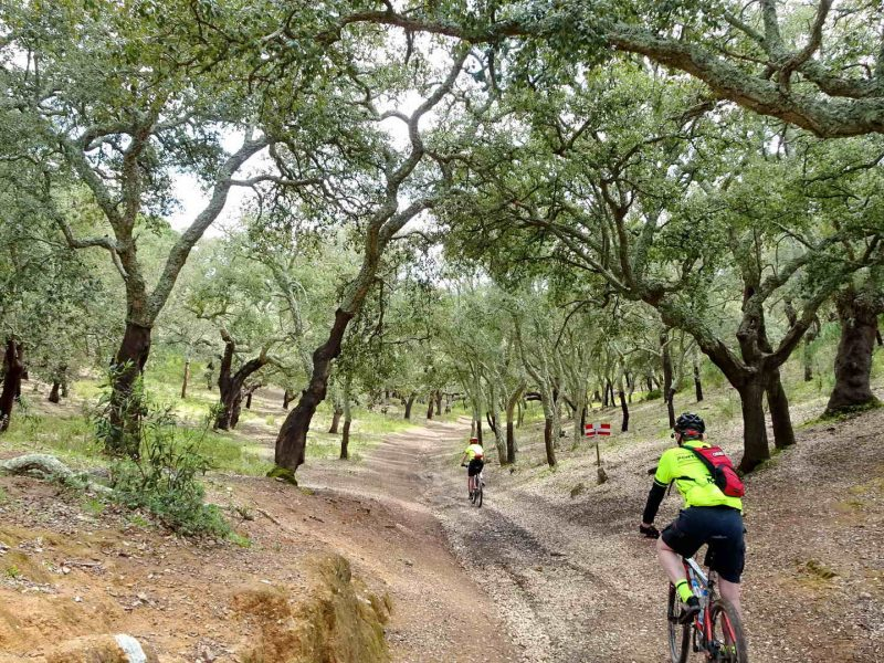 Cork Trees and Coast Supported - Portugal Bike Tours