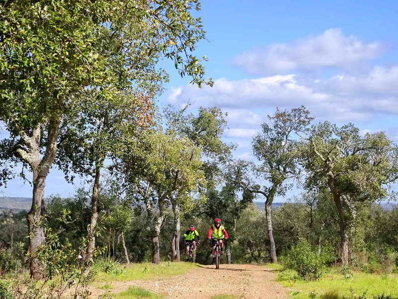 Cork Trees and Coast Self-Guided - Portugal Bike