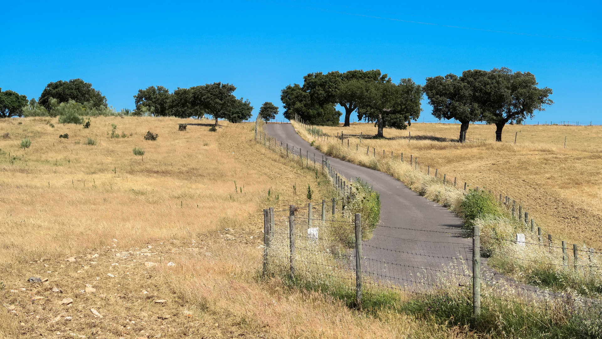 Bike Tour in Portugal, Cycling in Portugal