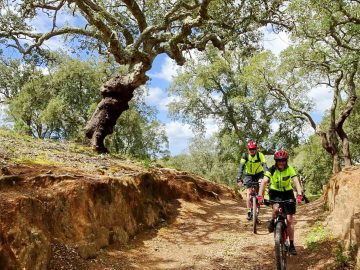 Cork Trees and Coast Guided - Portugal Bike Tours