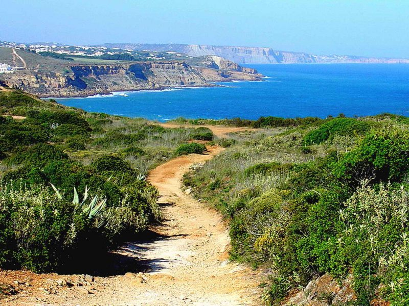 Cork Trees and Algarve Wild Coast Self-Guided - Portugal Bike Tours