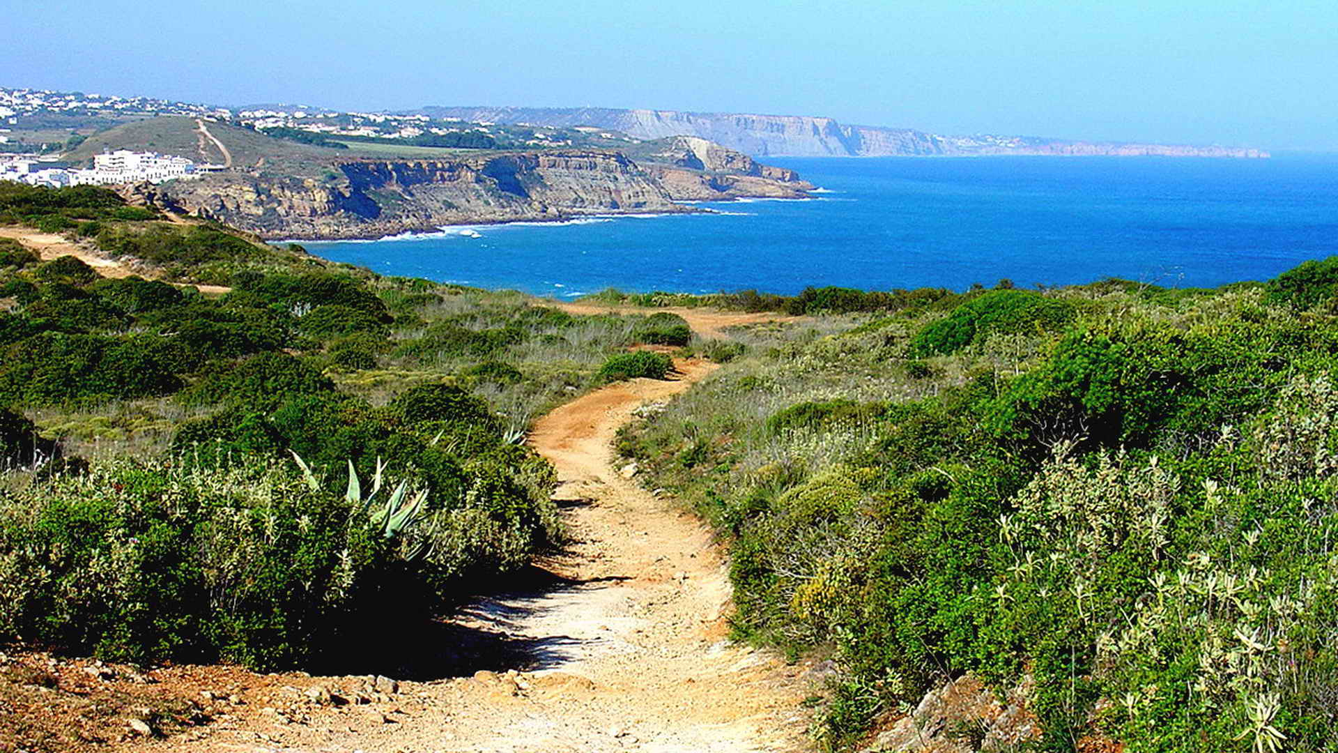 Self Guided Tour Portugal Bike Tours - Portugal vegetation map