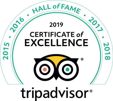 2019 TripAdvisor Certificate of Excellence- Hall of Fame Green line transparent