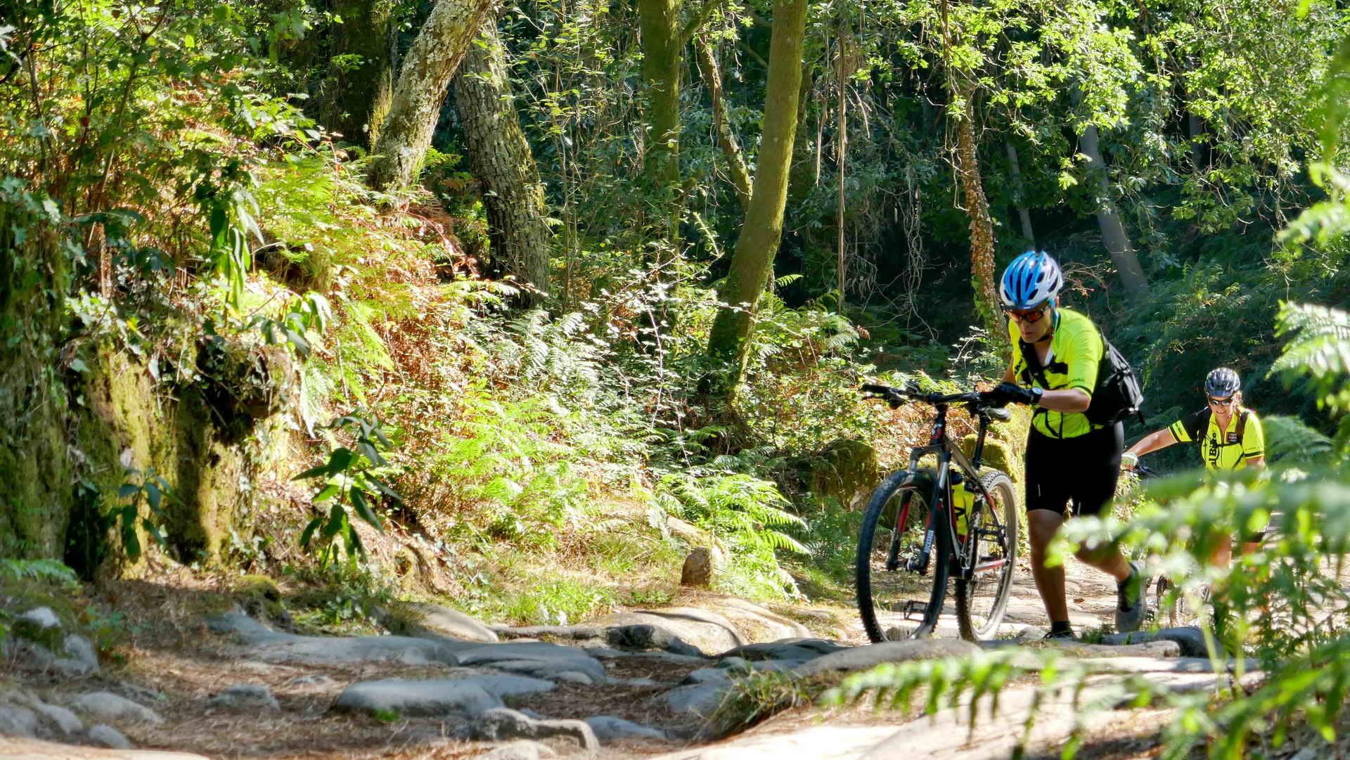 camino de santiago de compostela portugal bike tour