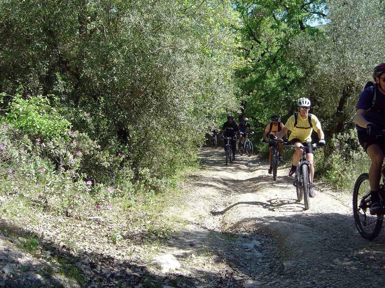 National Park Of Arrabida Hills Self Guided Portugal