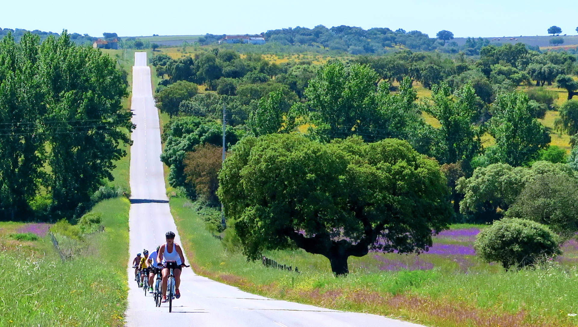 Cycling vacation in Europe - Portugal alentejo Bike Tour