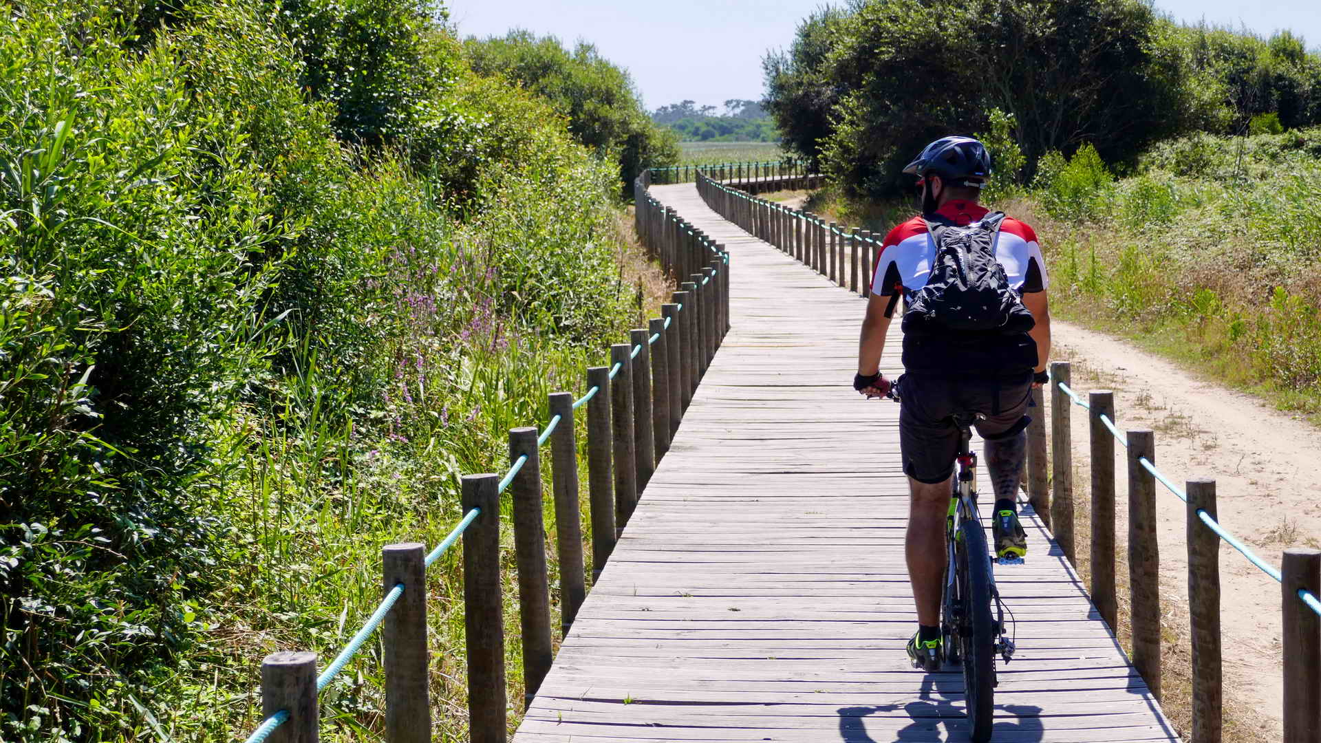 portugal bike tours along the silver coast 18