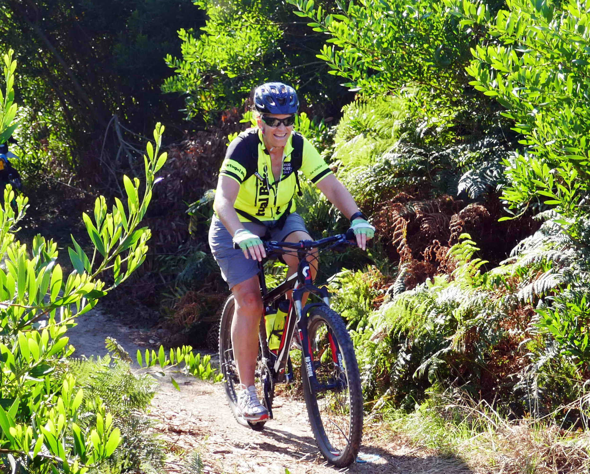 Cycling the Camino de Santiago, the medieval way forest routes