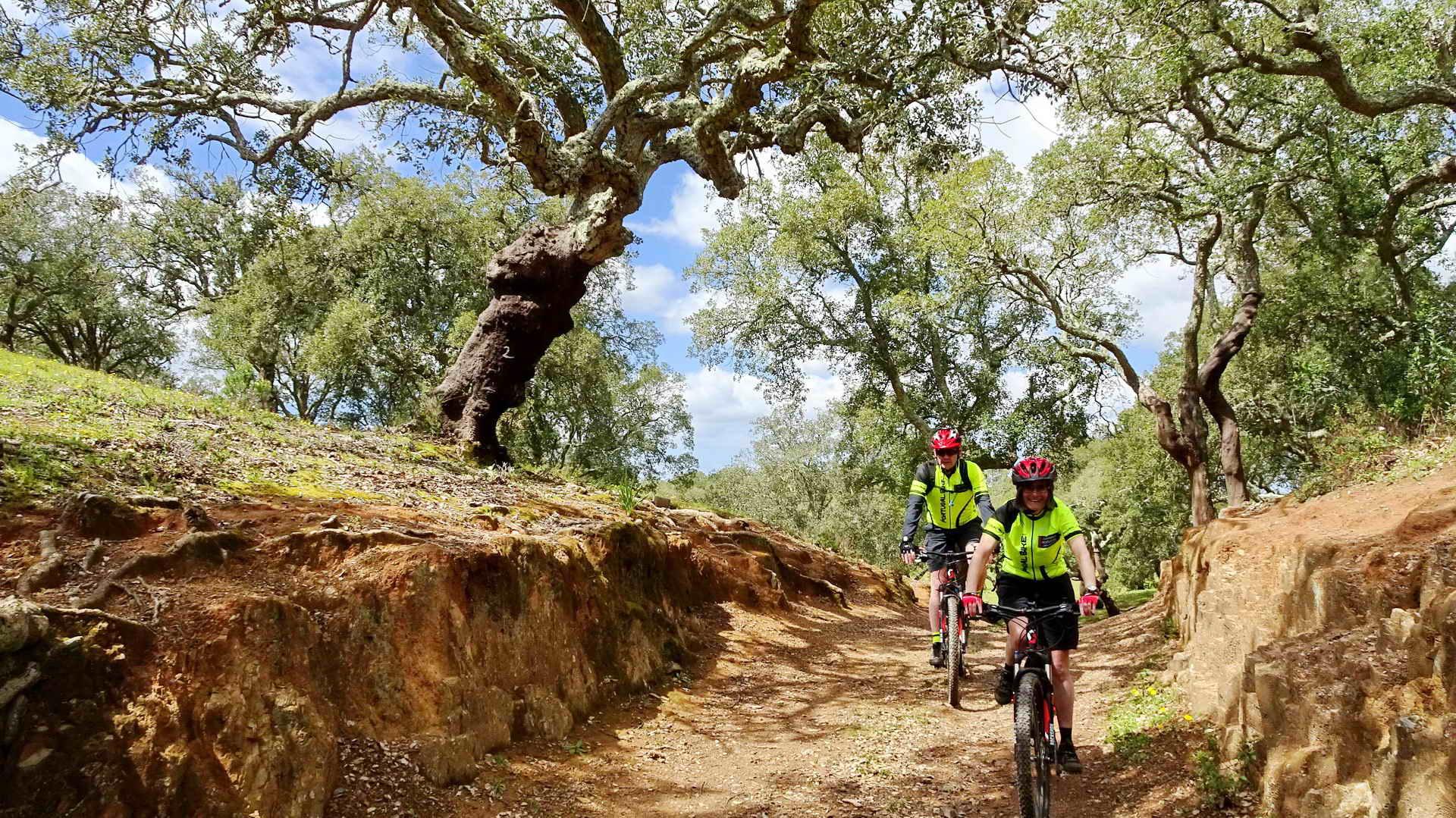 Mountain Biking in Portugal Alentejo Cork Tree Trails