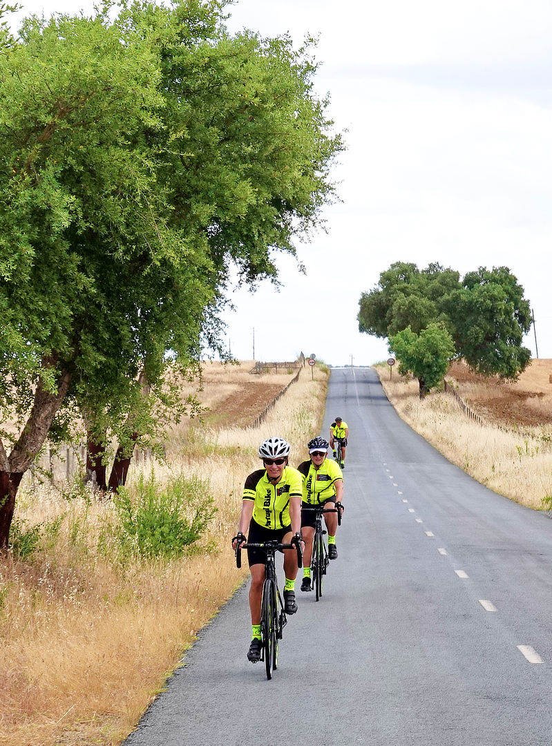 Small Group Cycling Tours Portugal Bike Private